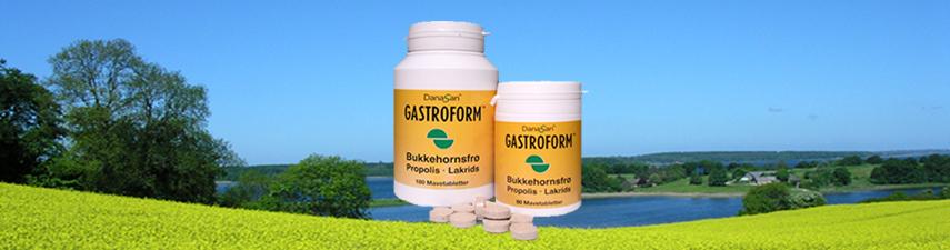 Header Gastroform